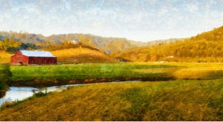 A North Carolina farm