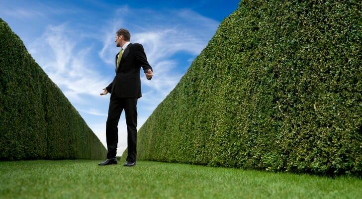 Man in between hedge rows