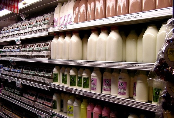 """""""Dairy Cliff"""" Could Send Milk Prices Soaring"""