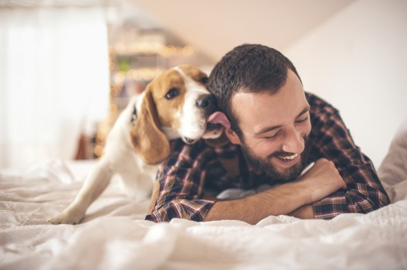Dog Friendly Image 3 The Most Dog Friendly Cities in America