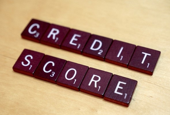 Grow Your Credit Score From the Ground Up