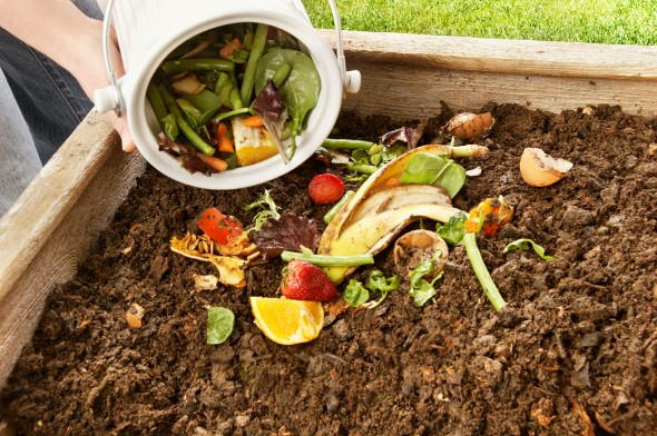 The Economics of Composting