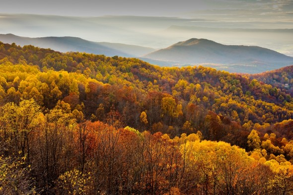 What is the Cost of Living in Virginia?