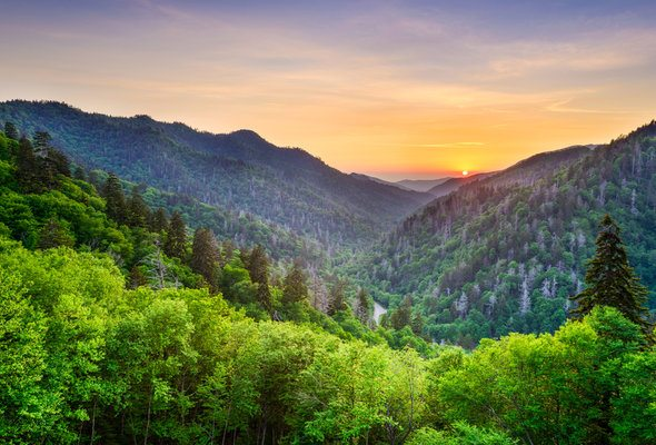 15 Things to Know Before Moving to Tennessee