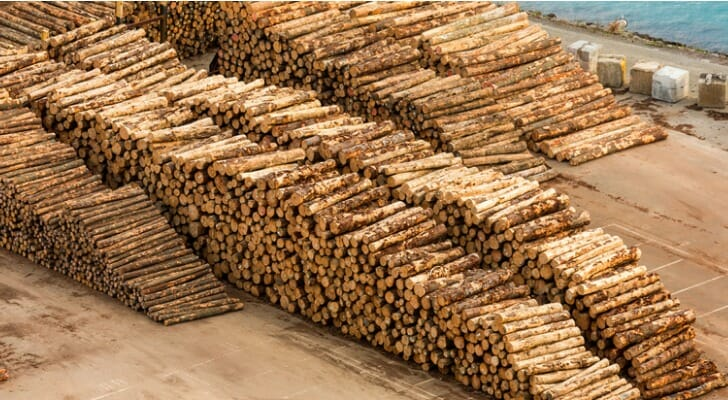 Timber ready for export
