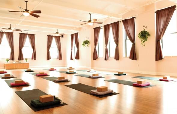 The Economics of Yoga