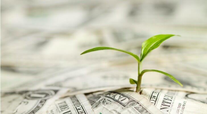 annuity vs mutual fund