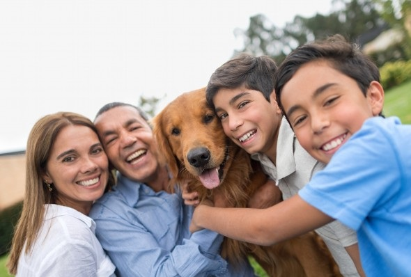 The Economics of the Pet Industry