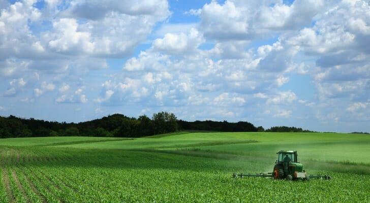 Farmer riding a tractor in a corn field