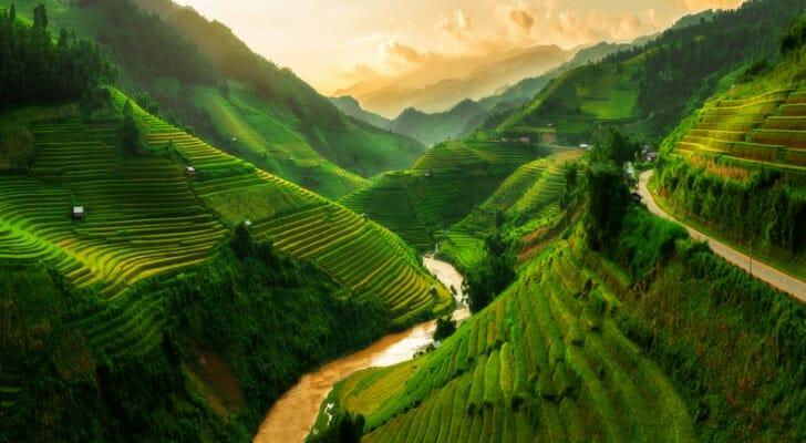 Terraced rice field near Sapa in Vietnam