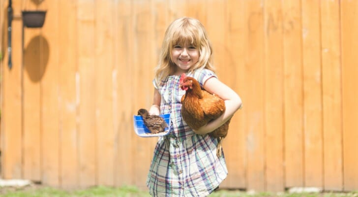 Girl holding hen and chick