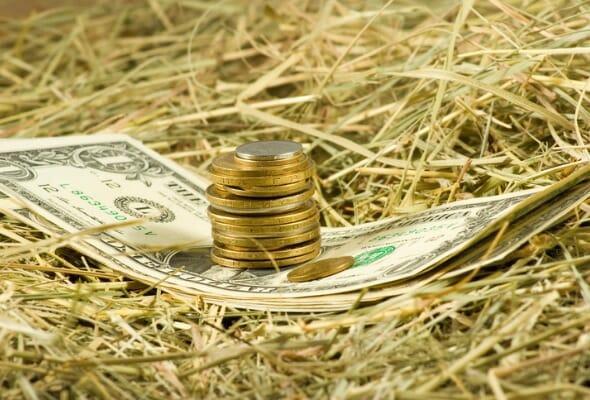 What Is a USDA Loan?
