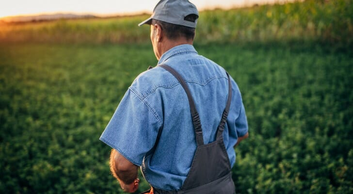 A farmer in a green field can now apply for small business stimulus relief.