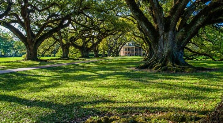 Oak Alley Historic Plantation in Mississippi
