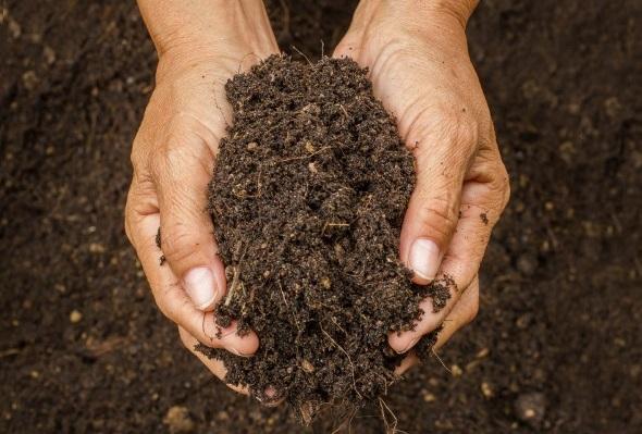 The Economics of Composting