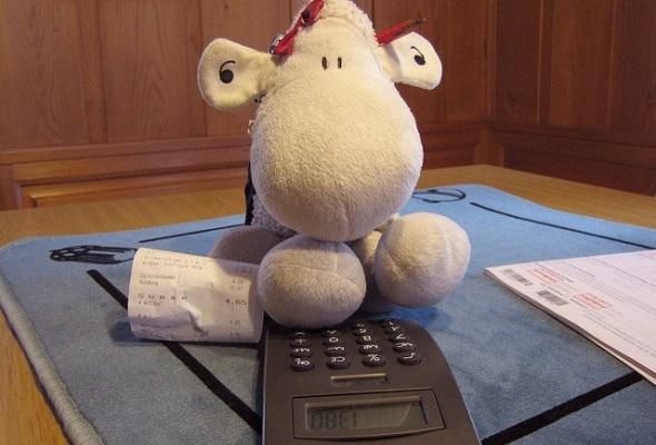 Tax Filing: DIY or Hire a Professional?