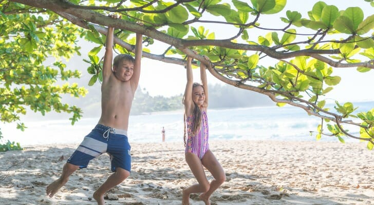 Two young siblings hand from a tree branch at a Hawaiian beach.