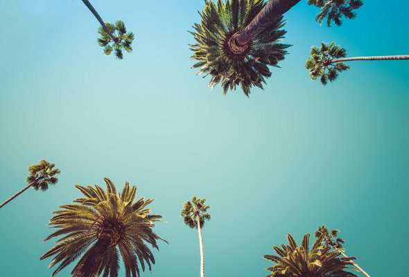 The Best Places to Live in California